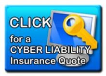Cyber-Liability Graphic_0